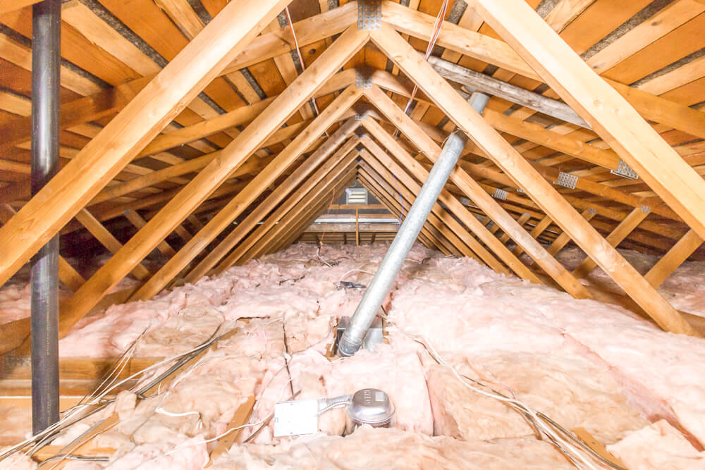 Protect your Attic From Invaders